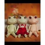 [16-33cm] Frog