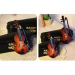 [70] Скрипка